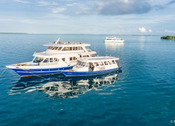 Maldives Explorer Boat