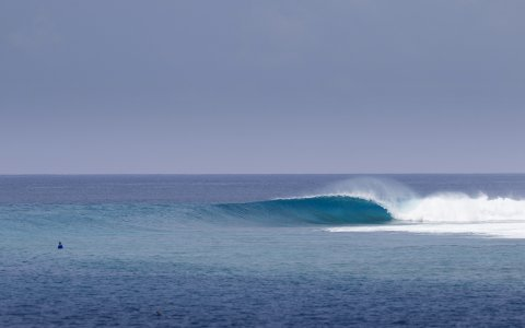 Empty Maldives lineup, pic: Ryan Williams